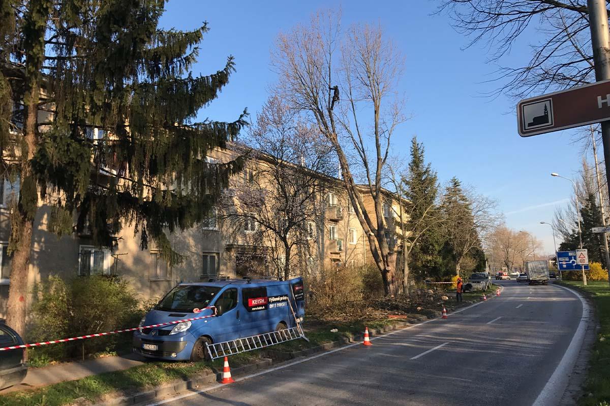 KEISH Ošetrovanie a výrub stromov – arboristika